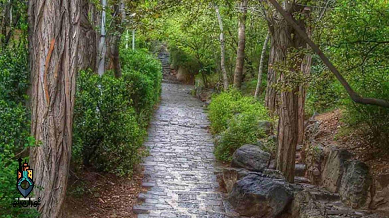 معرفی پارک قیطریه تهران | مشهورترین پارک پایتخت
